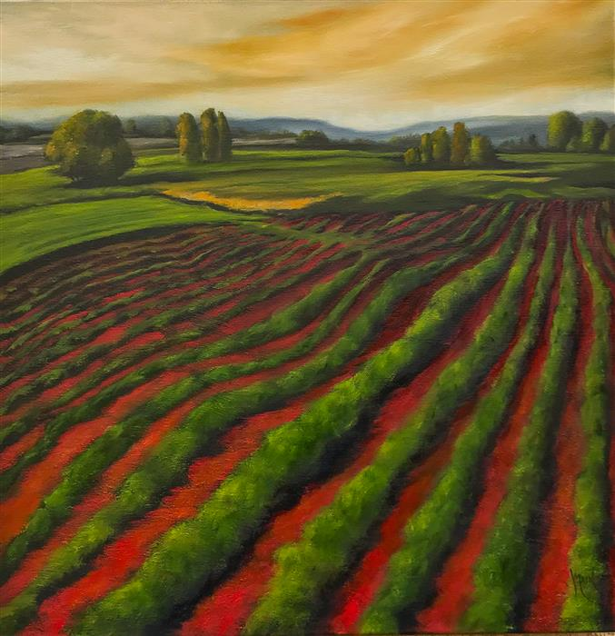 Original art for sale at UGallery.com | Red Field XX by MANDY MAIN | $800 |  | 18' h x 18' w | ..\art\oil-painting-Red-Field-XX