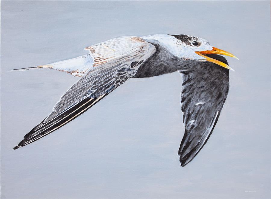 Original art for sale at UGallery.com | Great Crested Tern #1 by EMIL MORHARDT | $2,325 |  | 36' h x 48' w | ..\art\acrylic-painting-Great-Crested-Tern-1