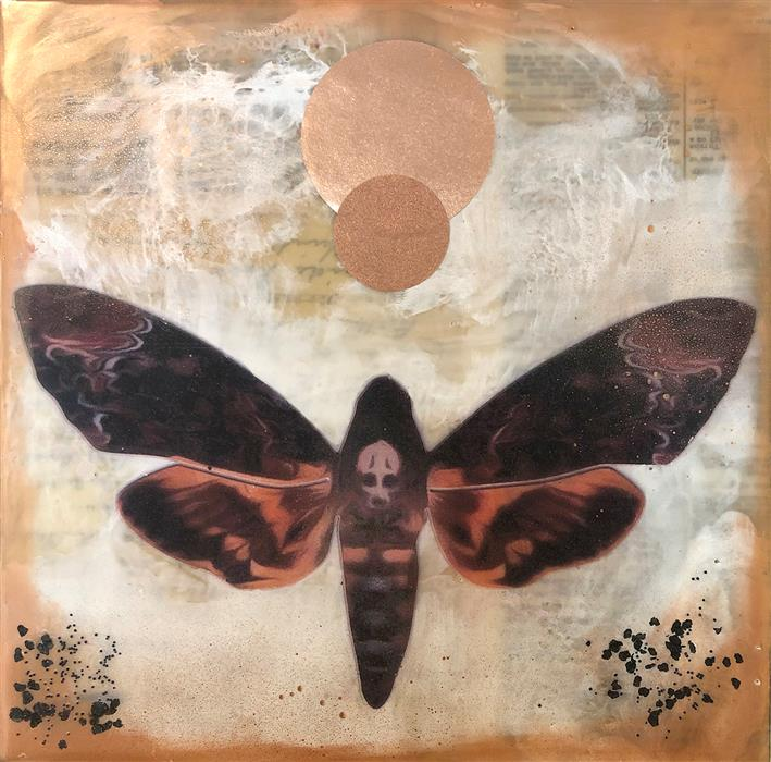 Original art for sale at UGallery.com | Death's-head Hawkmoth by SHANNON AMIDON | $525 |  | 12' h x 12' w | ..\art\encaustic-artwork-Death-s-head-Hawkmoth