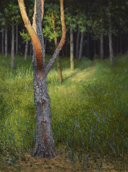 Original art for sale at UGallery.com | Piny Wood by DARIUSZ CHOINSKI | $925 |  | 12' h x 16' w | ..\art\oil-painting-Piny-Wood