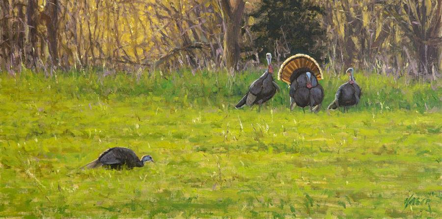 Original art for sale at UGallery.com | Spring Strut - Wild Turkeys by NATHAN HAGER | $950 |  | 12' h x 24' w | ..\art\oil-painting-Spring-Strut-Wild-Turkeys