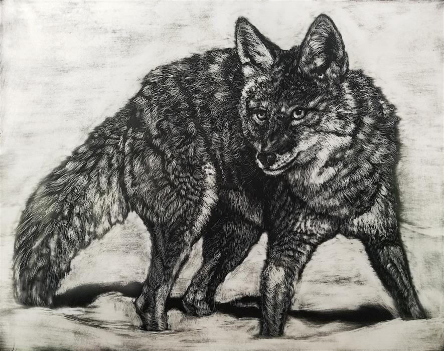 Original art for sale at UGallery.com | Snow Hunt by Jan Fontecchio Perley | $825 | ink artwork | 11' h x 14' w | ..\art\ink-artwork-Snow-Hunt