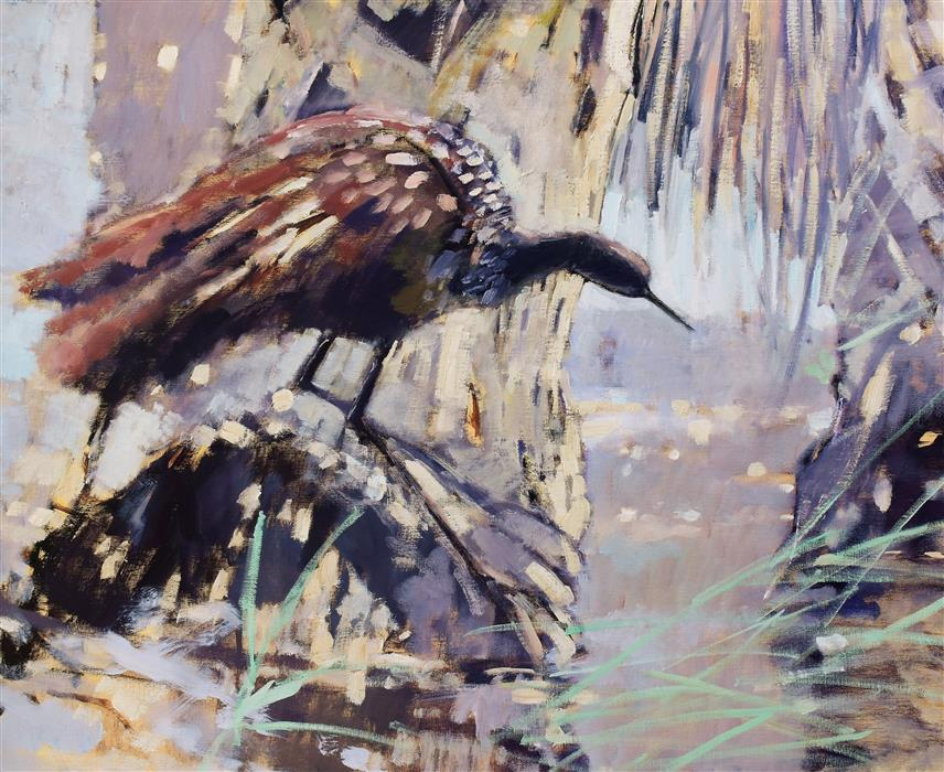 Original art for sale at UGallery.com | A Limpkin by Mary Pratt | $2,100 | oil painting | 24' h x 30' w | ..\art\oil-painting-A-Limpkin