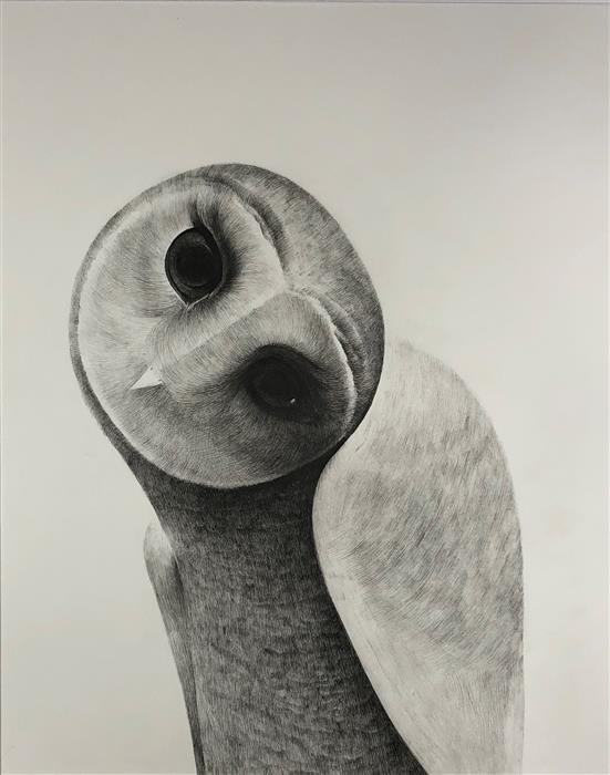 Original art for sale at UGallery.com | Friends for a Sobering Time 02 Owl by Ziui Vance | $1,350 | drawing artwork | 24' h x 18' w | ..\art\drawing-artwork-Friends-for-a-Sobering-Time-02-Owl