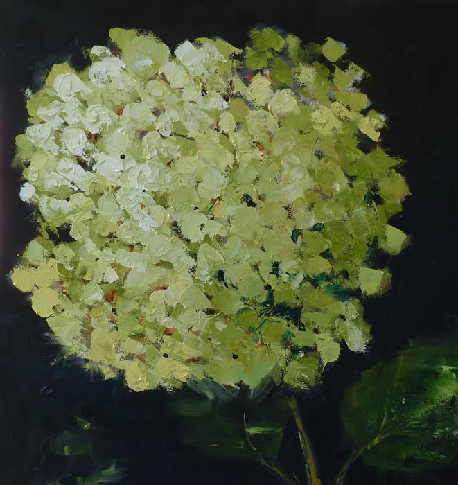 Original art for sale at UGallery.com | Green Hydrangea by Judy Mackey | $950 | oil painting | 20' h x 20' w | ..\art\oil-painting-Green-Hydrangea