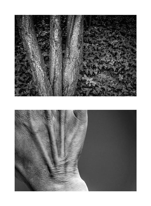 Original art for sale at UGallery.com | Diptych No. 10 by Alicja Brodowicz | $150 | photography | 15' h x 10' w | ..\art\photography-Diptych-No-10