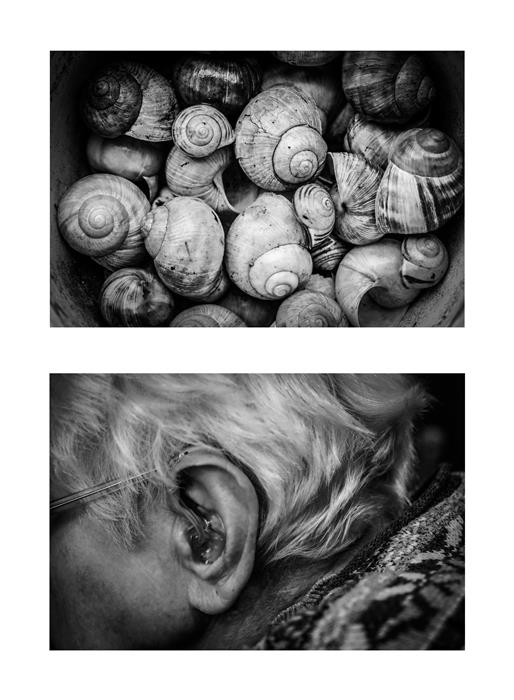 Original art for sale at UGallery.com   Diptych No. 13 by Alicja Brodowicz   $150   photography   15' h x 10' w   ..\art\photography-Diptych-No-13
