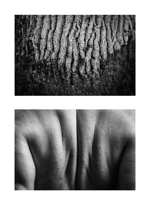 Original art for sale at UGallery.com | Diptych No. 4 by Alicja Brodowicz | $150 | photography | 15' h x 10' w | ..\art\photography-Diptych-No-4