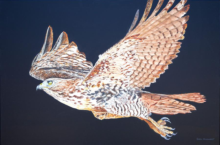 Original art for sale at UGallery.com   Red-Tailed Hawk at Night by Emil Morhardt   $1,600   acrylic painting   24' h x 36' w   ..\art\acrylic-painting-Red-Tailed-Hawk-at-Night