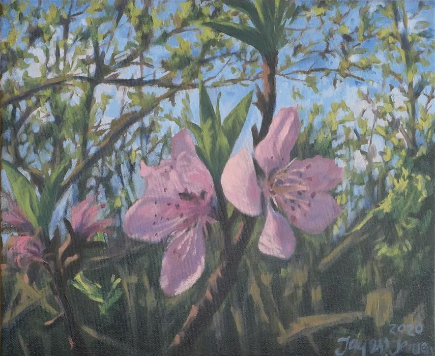 Original art for sale at UGallery.com | Spring Blossoms by Jay Jensen | $625 | oil painting | 10' h x 12' w | ..\art\oil-painting-Spring-Blossoms