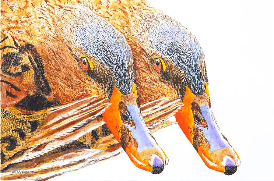 Original art for sale at UGallery.com | The Coy Miss Mallards by Emil Morhardt | $1,925 | acrylic painting | 24' h x 36' w | ..\art\acrylic-painting-The-Coy-Miss-Mallards