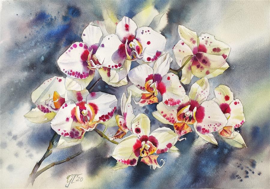 Original art for sale at UGallery.com | Orchid Indigo by Irina Pronina | $925 | watercolor painting | 15' h x 21' w | ..\art\watercolor-painting-Orchid-Indigo