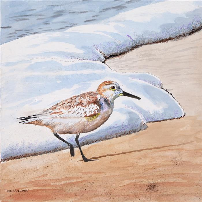 Original art for sale at UGallery.com | Sanderling #22 by Emil Morhardt | $975 | acrylic painting | 18' h x 18' w | ..\art\acrylic-painting-Sanderling-22