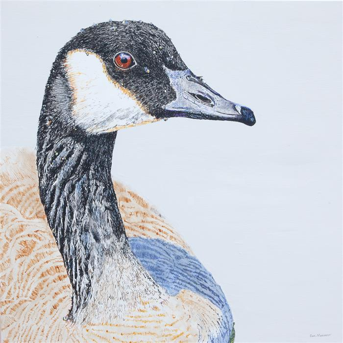 Original art for sale at UGallery.com | Canada Goose #1 by Emil Morhardt | $2,300 | acrylic painting | 36' h x 36' w | ..\art\acrylic-painting-Canada-Goose-1