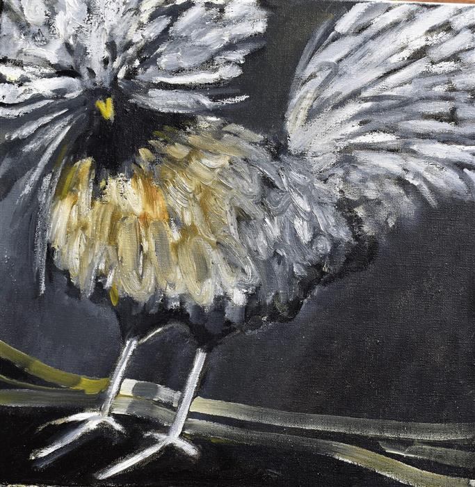 Original art for sale at UGallery.com   Fancier by Mary Pratt   $390   oil painting   12' h x 12' w   ..\art\oil-painting-Fancier