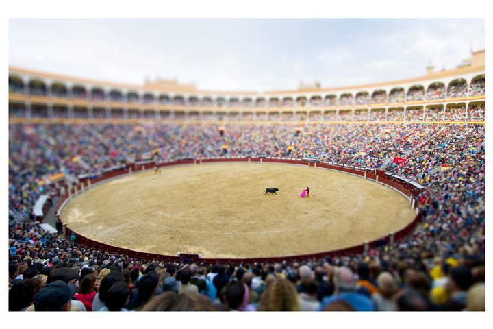 Original art for sale at UGallery.com | Bullfight, Madrid by BRYAN SOLARSKI | $145 |  | ' h x ' w | \art\photography-Bullfight-Madrid