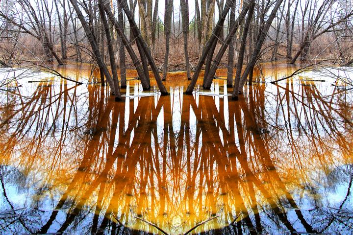 Original art for sale at UGallery.com | Reflect by GREGG OTTESON | $195 |  | ' h x ' w | \art\photography-Reflect