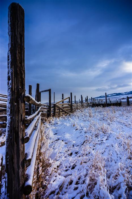 Original art for sale at UGallery.com | Corral, Montana by MATHEW LODGE | $245 |  | ' h x ' w | \art\photography-Corral-Montana
