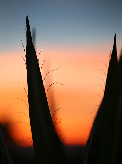 Original art for sale at UGallery.com | Sunset Santa Fe 1 by GRANT TAYLOR | $255 |  | ' h x ' w | \art\photography-Sunset-Santa-Fe-1