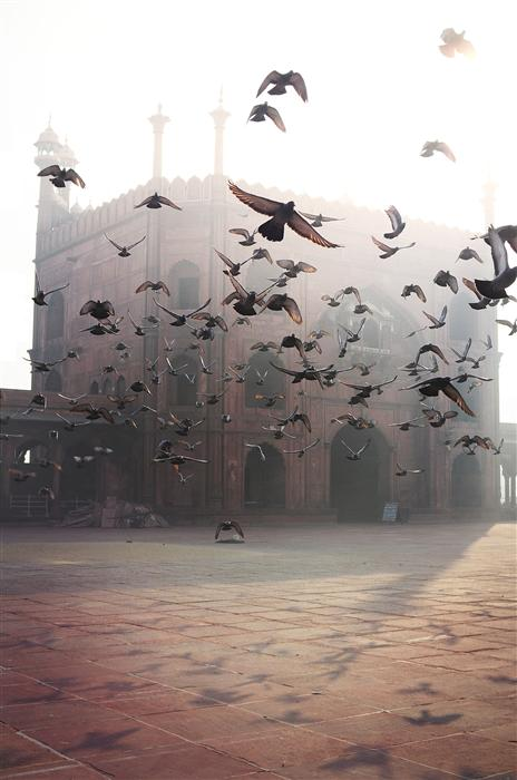 Original art for sale at UGallery.com | Delhi by ETIENNE ROUDAUT | $195 |  | ' h x ' w | \art\photography-Delhi
