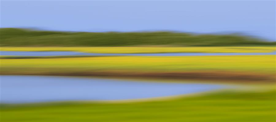 Original art for sale at UGallery.com | Marsh Meadows by KATHERINE GENDREAU | $345 |  | ' h x ' w | \art\photography-Marsh-Meadows