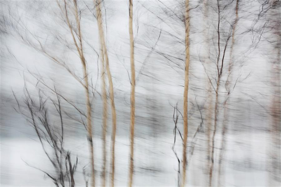 Original art for sale at UGallery.com | Winter Road by MARIA PLOTNIKOVA | $145 |  | ' h x ' w | \art\photography-Winter-Road