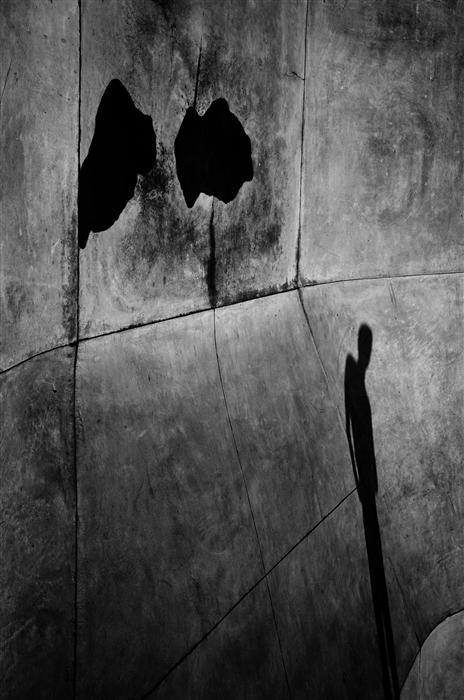 Original art for sale at UGallery.com | Shadow by ALICJA BRODOWICZ | $245 |  | ' h x ' w | \art\photography-Shadow-39220
