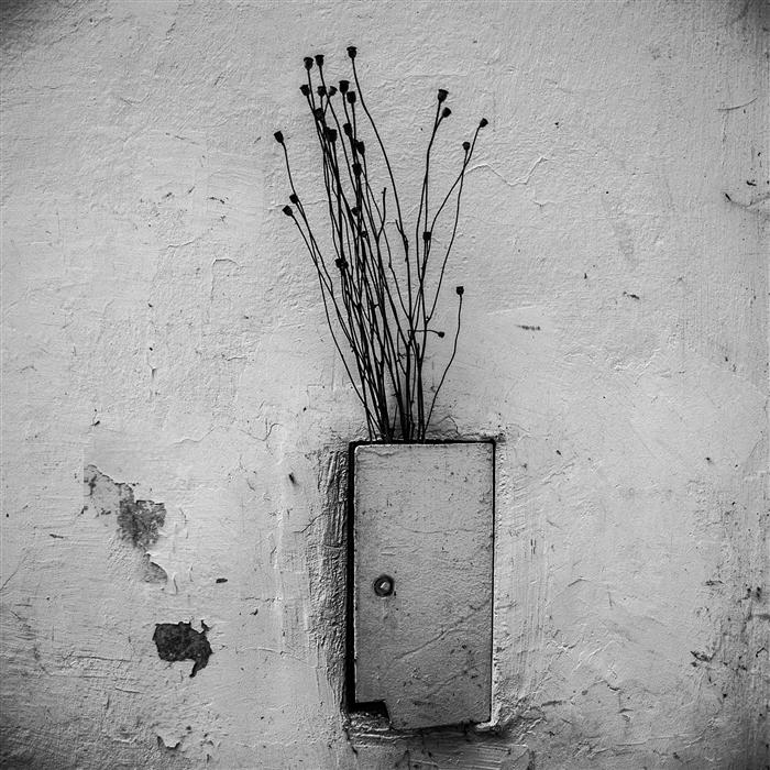 Original art for sale at UGallery.com | Vase by ALICJA BRODOWICZ | $285 |  | ' h x ' w | \art\photography-Vase