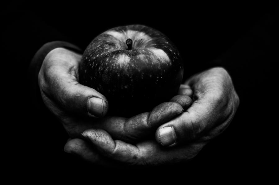 Original art for sale at UGallery.com | First Apple by ALICJA BRODOWICZ | $295 |  | ' h x ' w | \art\photography-First-Apple