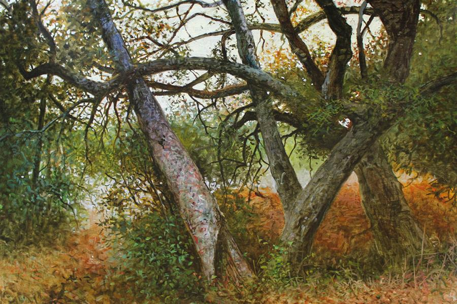 Discover Original Art by Kent Sullivan | Live Oak Canyon oil painting | Art for Sale Online at UGallery