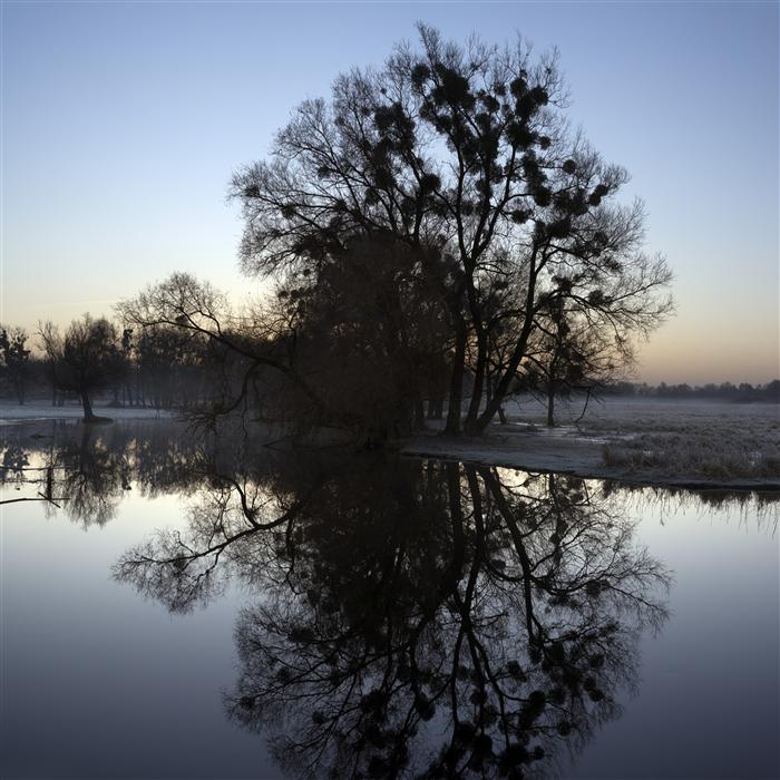 Original art for sale at UGallery.com | Morning Mirror by TARAS LESIV | $160 |  | ' h x ' w | \art\photography-Morning-Mirror