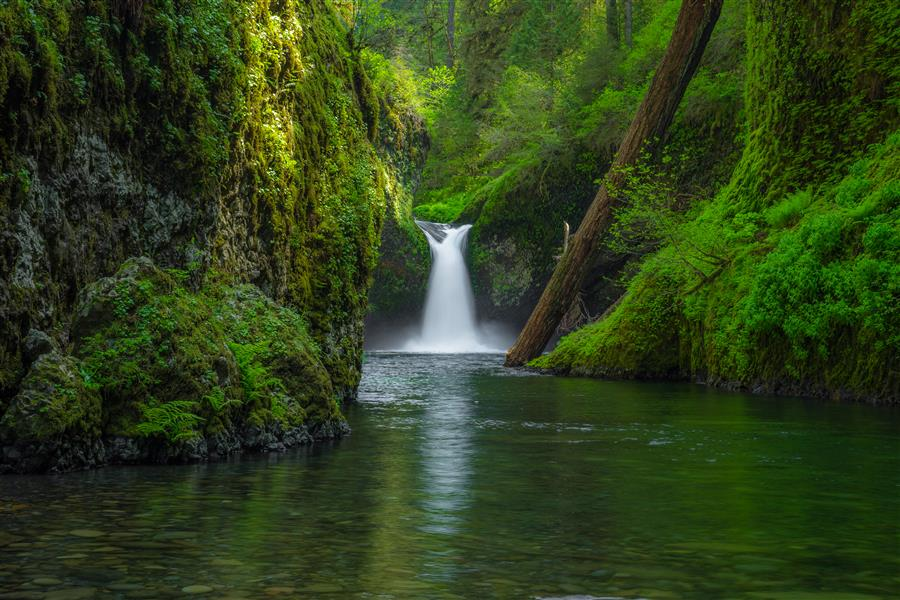 Original art for sale at UGallery.com | Punchbowl Falls by ROSS LIPSON | $245 |  | ' h x ' w | \art\photography-Punchbowl-Falls