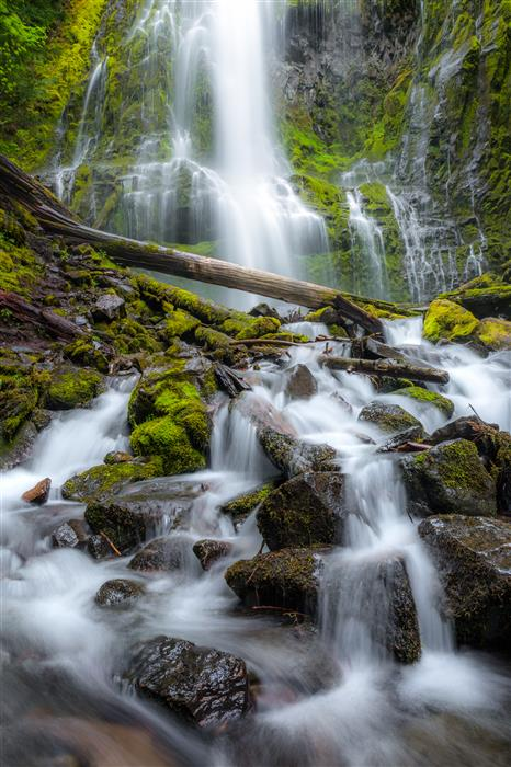 Original art for sale at UGallery.com | Proxy Falls by ROSS LIPSON | $245 |  | ' h x ' w | \art\photography-Proxy-Falls