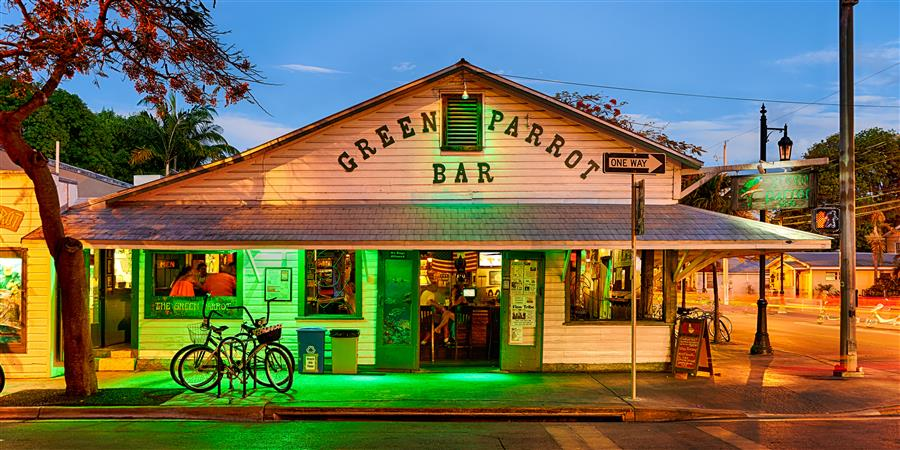 Original art for sale at UGallery.com | Green Parrot Bar 2 by MIKE RING | $195 |  | ' h x ' w | \art\photography-Green-Parrot-Bar-2