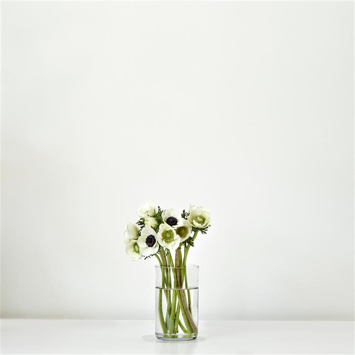 Original art for sale at UGallery.com | Flower Vase Series IV by KATHLEEN FINLAY | $345 |  | ' h x ' w | \art\photography-Flower-Vase-Series-IV