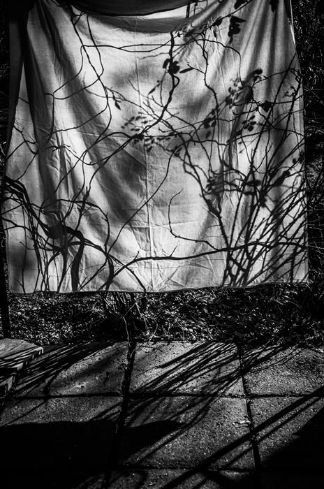 Original art for sale at UGallery.com | Shadows Series No. 4 by ALICJA BRODOWICZ | $145 |  | ' h x ' w | \art\photography-Shadows-Series-No-4