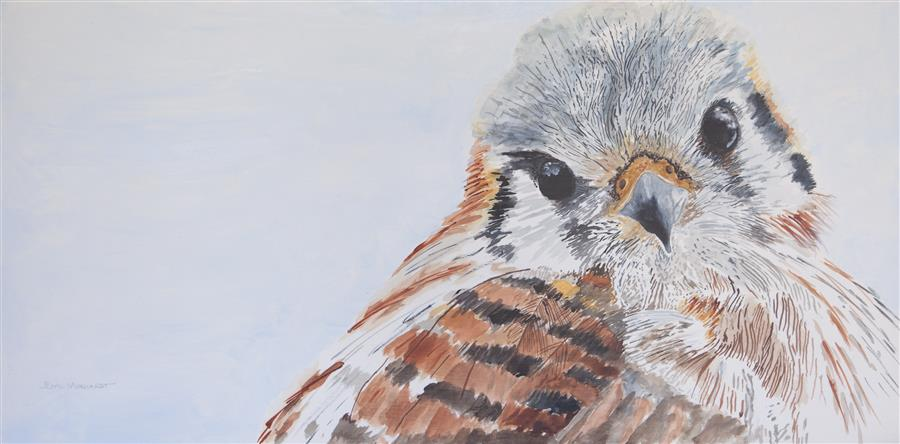 Discover Original Art by Emil Morhardt | Kenati the Calm Kestrel acrylic painting | Art for Sale Online at UGallery