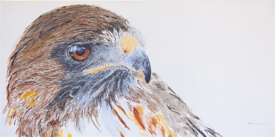 Discover Original Art by Emil Morhardt | Ivan the Red-Tailed Hawk Cogitating acrylic painting | Art for Sale Online at UGallery