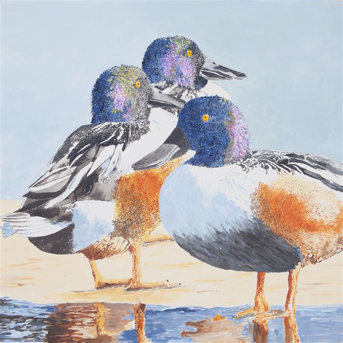 Discover Original Art by Emil Morhardt | Three Northern Shovelers acrylic painting | Art for Sale Online at UGallery