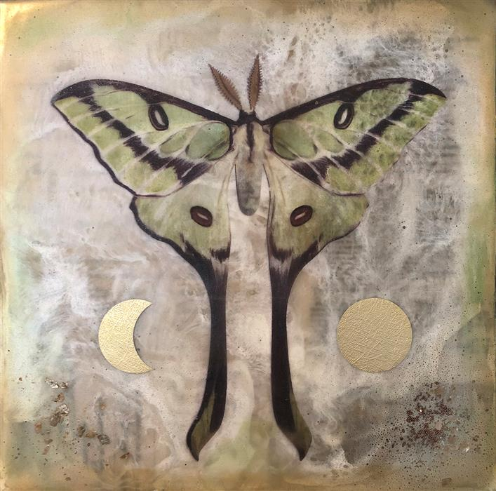 Discover Original Art by Shannon Amidon | Moon Moth encaustic artwork | Art for Sale Online at UGallery