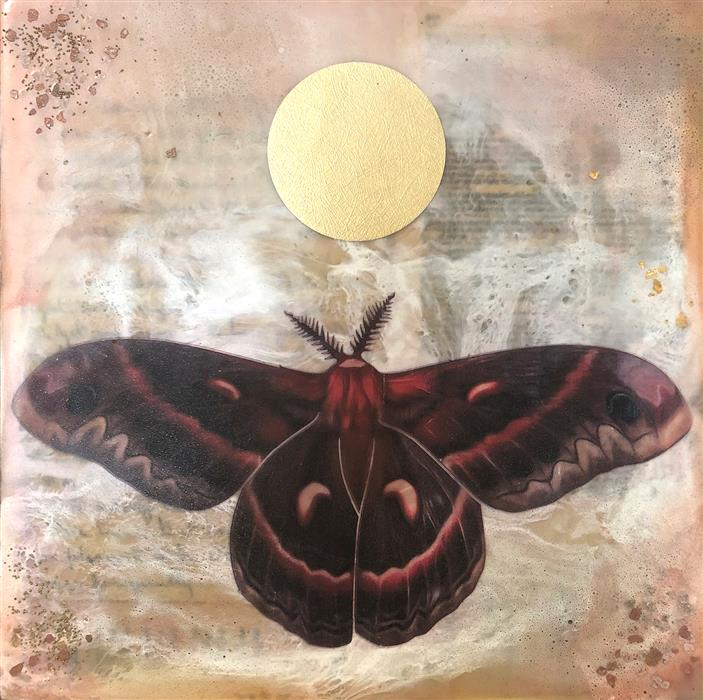 Discover Original Art by Shannon Amidon | Cecropia Moth encaustic artwork | Art for Sale Online at UGallery
